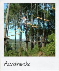 pola accrobranches-bd8a2672
